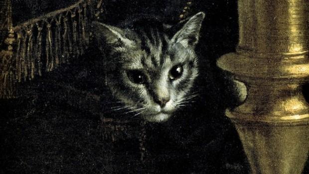 Cat Sense by John Bradshaw | Review Roundup | The Omnivore