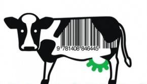 Farmageddon: The True Cost of Cheap Meat by Philip Lymbery with Isabel Oakshott | Book Review Roundup | The Omnivore